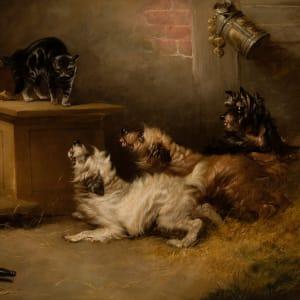 Antagonizing the Barn Cat