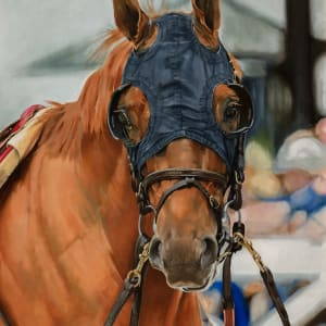 Blinkers, Call Provision