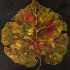 """Little Fig Leaf"" by Ansley Pye by Ansley Pye"
