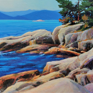 Lighthouse Park Study