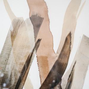 Birch Bark, Oak Gall, Ash