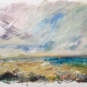 The Wild Bay by Lesley Birch