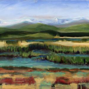 Valley Wetlands