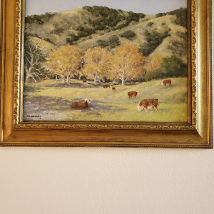 Sycamore and Cattle