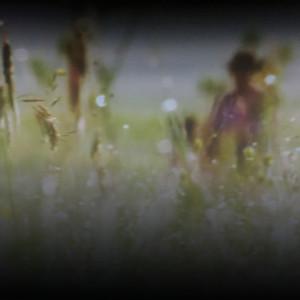 Cowboy in the weeds g47cgd