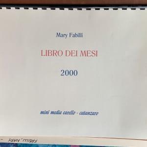 Libro Dei Mesi by Mary Fabilli