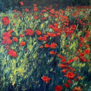 Poppies on King I  36.07546N 79.10113W by Thomas Stevens