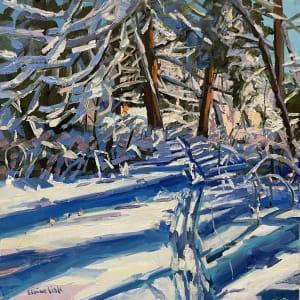 Snow Shadows by Elaine Lisle