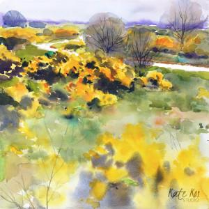 2019 art painting watercolor landscape irish by kate kos   gorse copy rec2rw