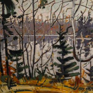 Maple Flowers, Eunice Lake, Nova Scotia by Mark Brennan