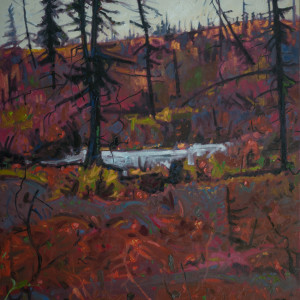 October, The Boreal Forest by Mark Brennan