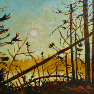 Swamp Edge At Dawn, Drydens Lake, Nova Scotia by Mark Brennan