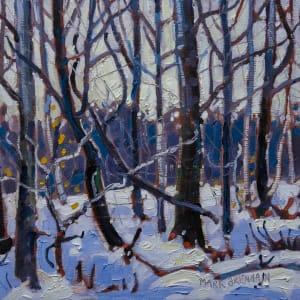 Winter, Six Mile Brook, Nova Scotia by Mark Brennan