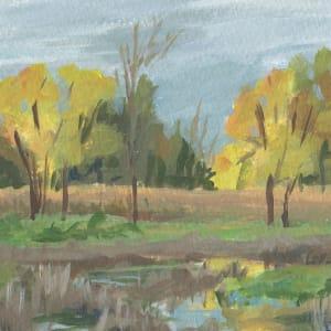 Tamarak Wetlands by Carrie Arnold