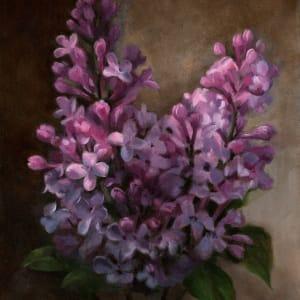 Lilacs 1600 vcnnzc
