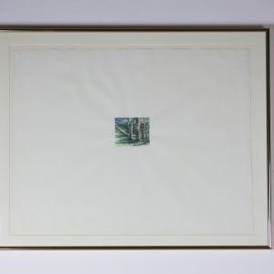Ferns - Steep Revine by William George Allan
