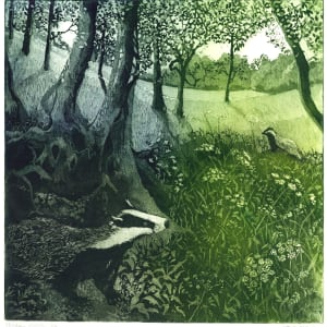 LON076, Badger Watch by Claire Longley
