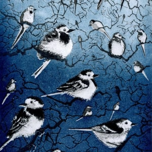 LON164, Wagtail Roost