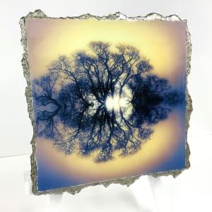 WEL135, Symmetree 20 Gold Blue Hue by Mark Welland