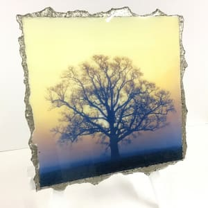 WEL136, Sunrise Silhouette Gold Blue Hue by Mark Welland