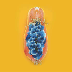 Edible Flower by Marryam Moma