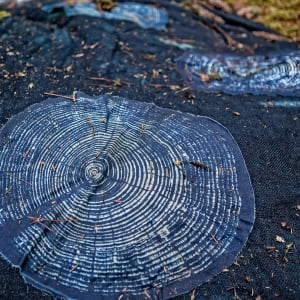 Leylines of Ghost Trees by Bonnie Baker