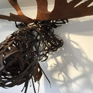 moose musings by Barbara Houston