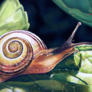 Snail's Pace by Hope Martin
