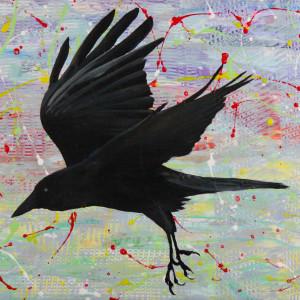 1 ravensflight lrg psxxz5