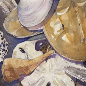 Shell session 6 x 6 watercolor 083116 400dpi hevozb