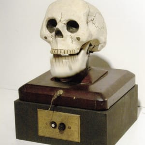 Skull Chatter Box by The Independent Order of Odd Fellows