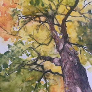 Tree Tales by Holly Friesen
