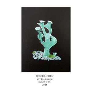 Boxer Lichen by Jane Troup