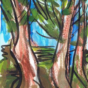 Redwoods XIII by Sonya Kleshik