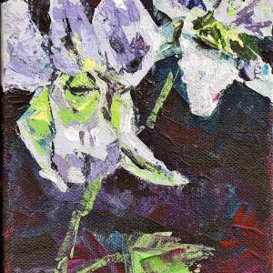 White Orchids by Sonya Kleshik