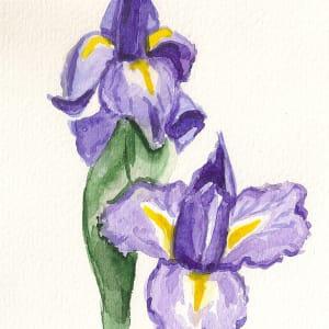 Two Irises by Sonya Kleshik