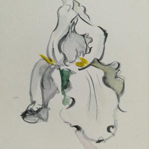 White Iris by Sonya Kleshik
