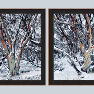 Winter Solstice (pair)  I & II by Fiona Latham-Cannon