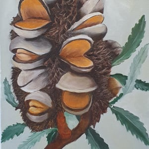 Banksia by Sylvia Wall
