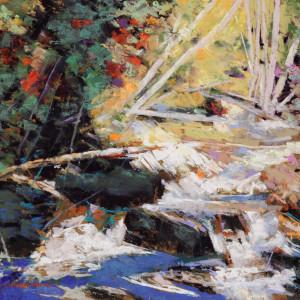 Rushing creek 1 2 nwvnet