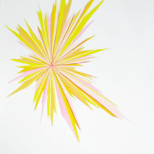 Yellow Star by Lee Clarke