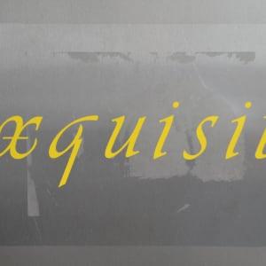 Exquisite by Lee Clarke