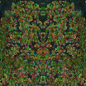 Shaman (Cellular Tapestries) by Michael Endicott