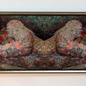 Eve: The Universe Within (Cellular Tapestries) by Michael Endicott