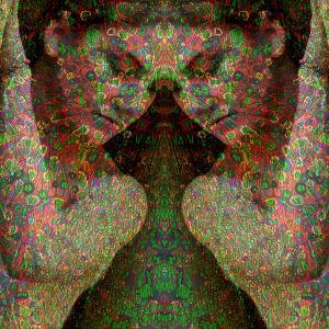 Meerkat (Cellular Tapestries) by Michael Endicott