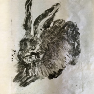 Young Hare - Ode' to Albrecht Durer by Susan Grucci