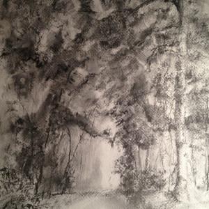 Lane along Hunter Lake by Susan Grucci