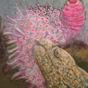 Flower Sea Urchin and Jeweled Moray