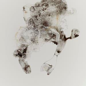 Mutant 5 by Barbara Fisher