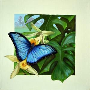 Tropical Blue Morpho